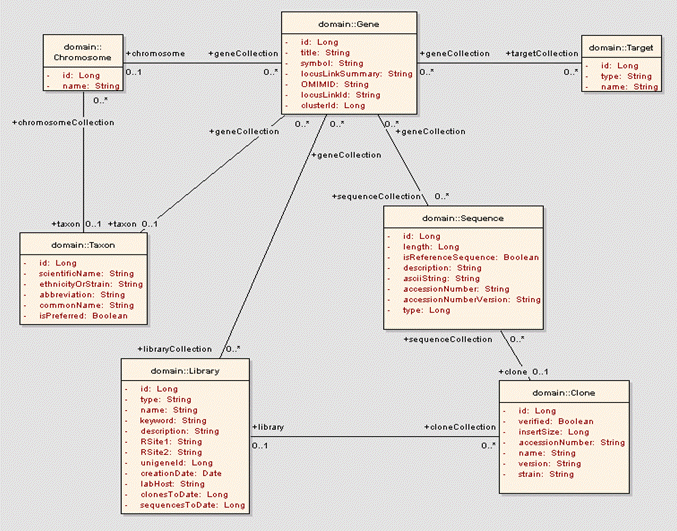 understanding unified modeling language  uml    cadsr   national    example uml class diagram depicting the cabio   objects