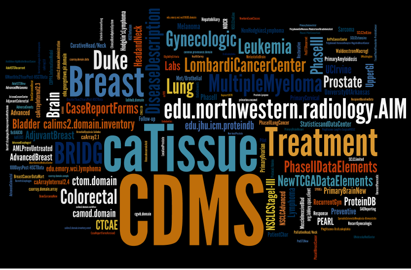 caDSR word cloud as described