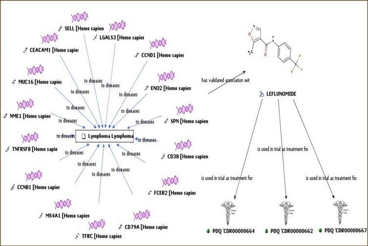 Illustration showing that researchers can use the data resource to quickly identify genes (shown as purple DNA fragments) that are associated with and may be markers for lymphoma. The figure is described in detail in the text.